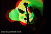 Photography of musicians live gigs